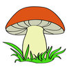 Coloring pages color example mushroom