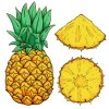 Coloring pages color example juicy pineapple