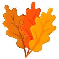 Раскраска дубовые листья осень для детей распечатать формат А4