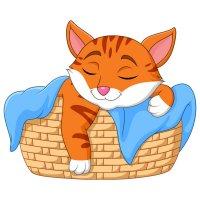 Раскраска котик греется под одеялкой для детей распечатать ...