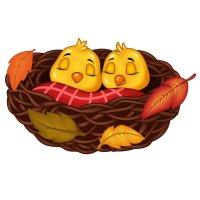 Раскраска птенцы осень для детей распечатать формат А4