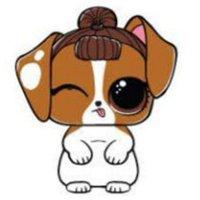 Раскраска лол питомцы милый щенок для девочек распечатать