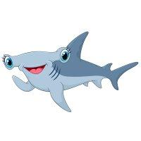 Раскраска акула-молот для детей распечатать