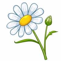 Раскраска дикий цветок ромашка для детей распечатать   Цветы
