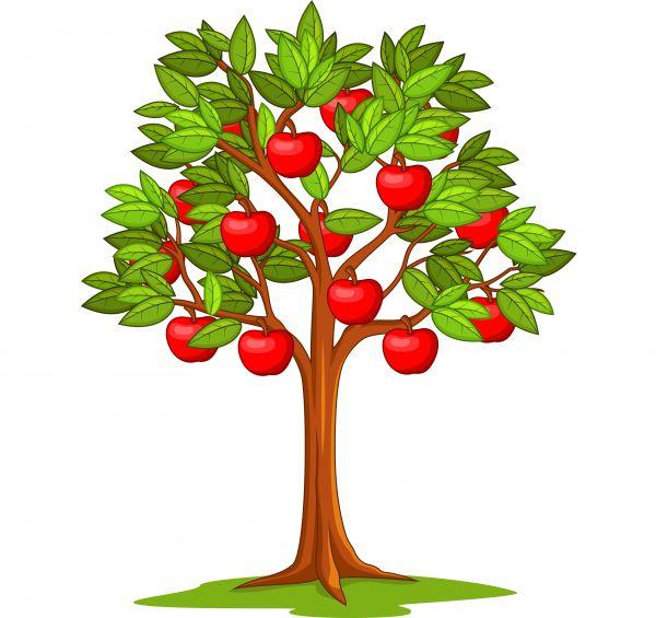 Раскраска лето дерево с яблоками, яблоня для детей распечатать