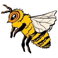 Раскраска пчела как настоящая для детей распечатать
