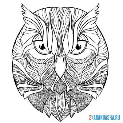 Print a coloring book owl head on A4