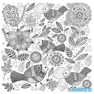 Print a coloring book birds and flowers on A4