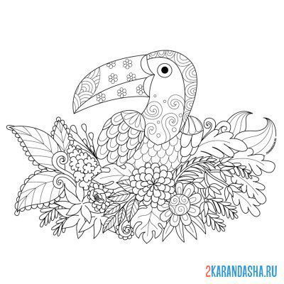 Print a coloring book little bird on A4