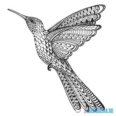 Print a coloring book hummingbird on A4
