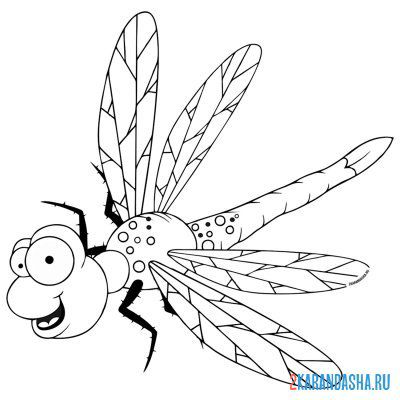 Print a coloring book funny dragonfly on A4