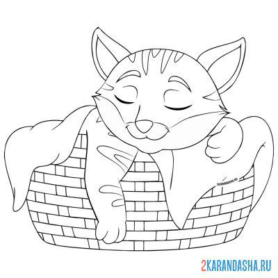 Print a coloring book the cat is basking under the blanket on A4