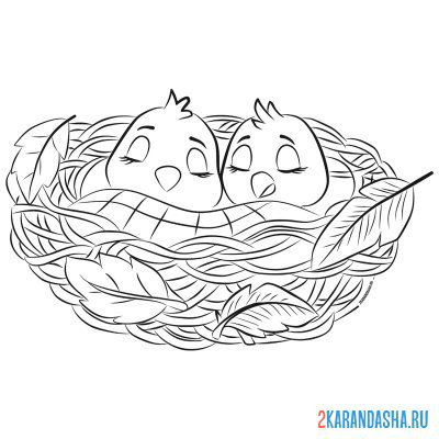 Print a coloring book chicks autumn on A4