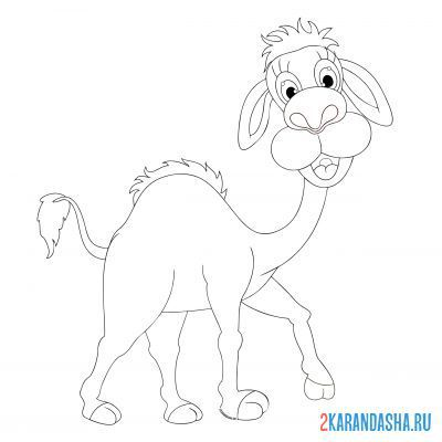 Print a coloring book camel in a good mood on A4