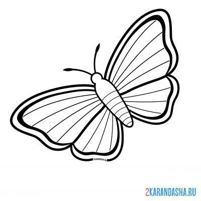Print a coloring book butterfly with simple lines on A4