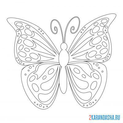 Print a coloring book butterfly with big wings on A4