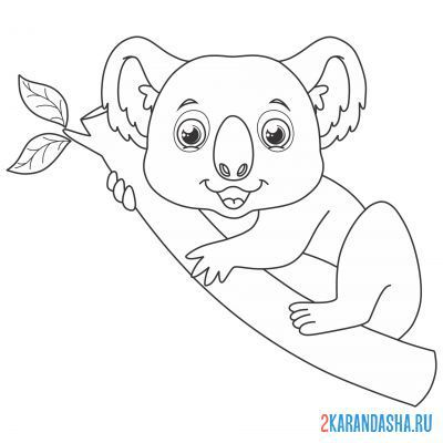 Print a coloring book koala on a tree branch on A4