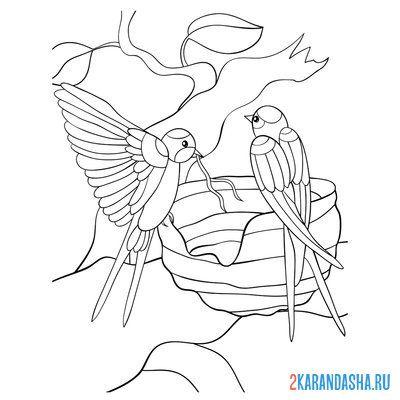 Раскраска весна, птичка на цветущей ветке для детей ...