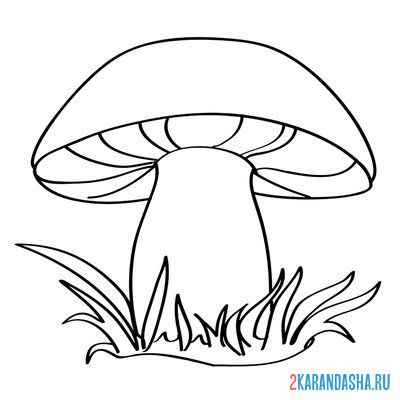 Print a coloring book mushroom on A4