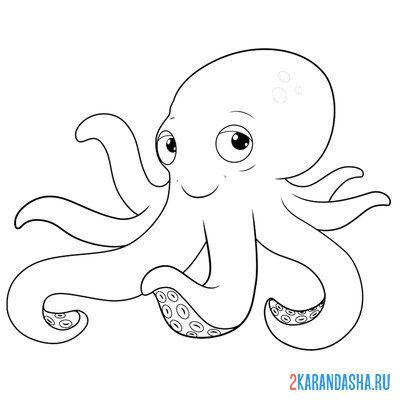 Print a coloring book octopus on A4