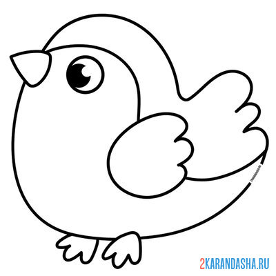 Print a coloring book small bird on A4