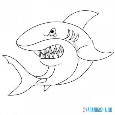 Раскраска синяя акула для детей распечатать