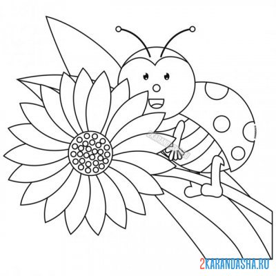 Print a coloring book in flower on A4