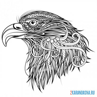 Print a coloring book beautiful eagle on A4