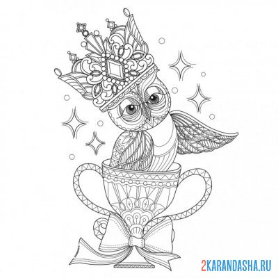 Print a coloring book owl in the cup on A4