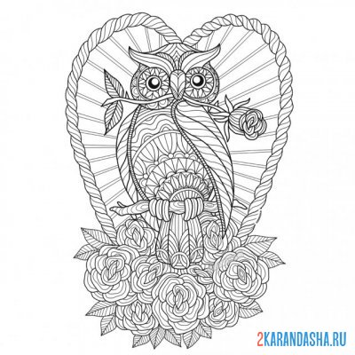 Print a coloring book owl in flowers on A4
