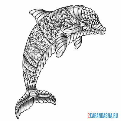 Print a coloring book dolphin on A4