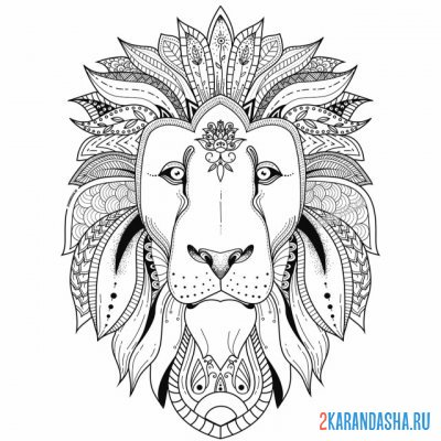 Print a coloring book the head of a wild lion on A4