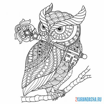 Print a coloring book beautiful owl with a key on A4