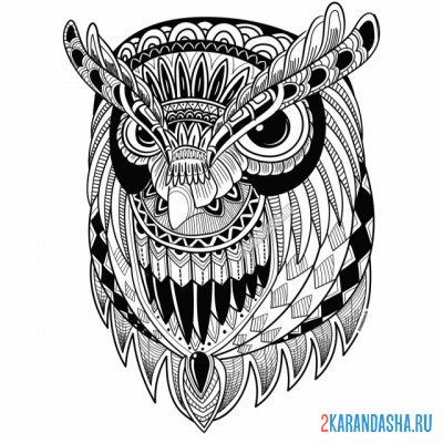 Print a coloring book head of a beautiful owl on A4