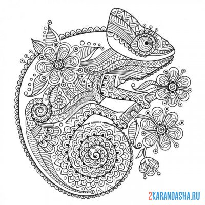 Print a coloring book chameleon on A4
