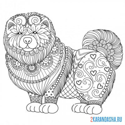 Print a coloring book beautiful chao-chao dog on A4