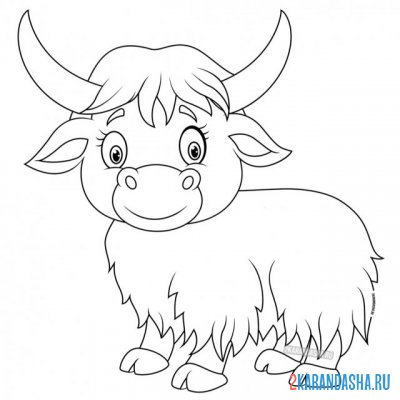 Print a coloring book little bison bull on A4