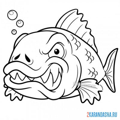 Print a coloring book angry piranha on A4