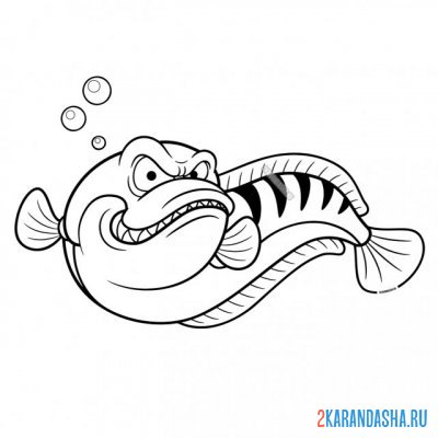 Print a coloring book snakehead on A4
