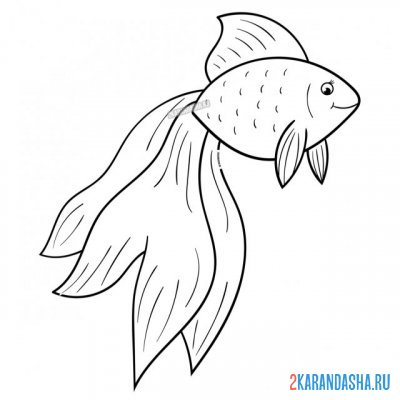 Print a coloring book slender goldfish with a long tail on A4