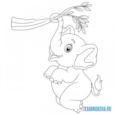Print a coloring book cute baby elephant hanging on a branch on A4