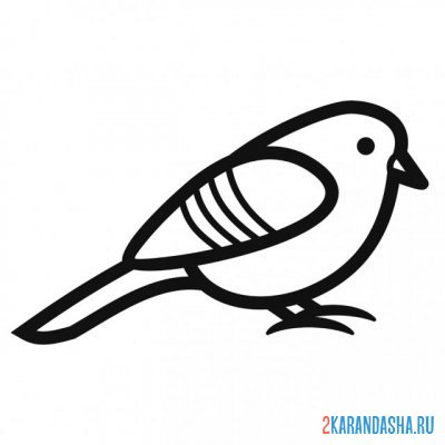 Print a coloring book simple bird on A4
