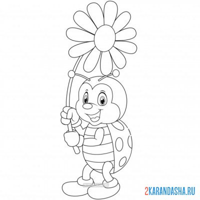 Print a coloring book with a flower chamomile on A4