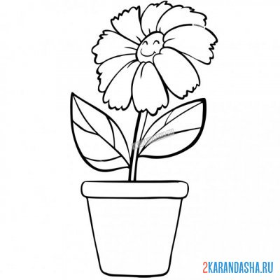 Print a coloring book cornflower flower with eyes in a pot on A4