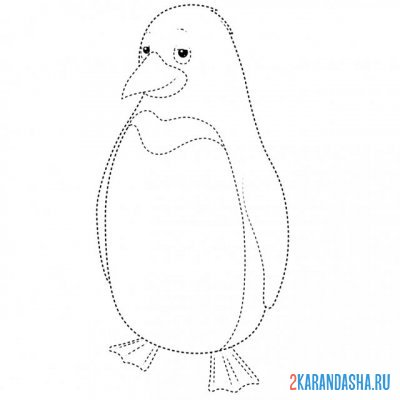 Print a coloring book penguin point by point on A4