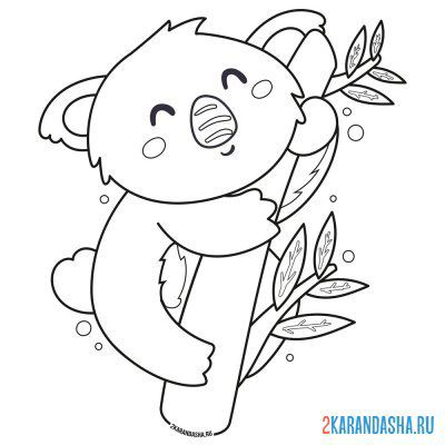 Print a coloring book cute koala on eucalyptus tree on A4