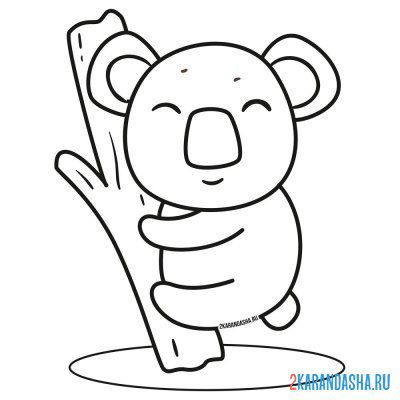 Print a coloring book fluffy koala on A4