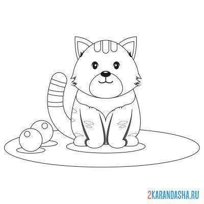 Раскраска кот-единорог распечать