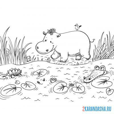 Print a coloring book hippopotamus near a pond on A4