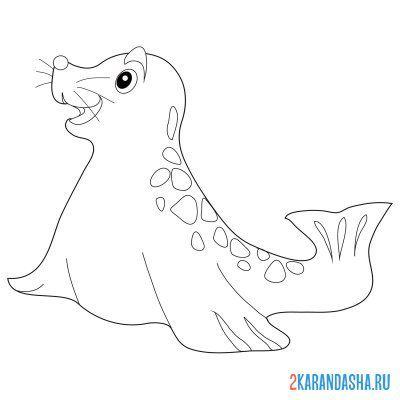Раскраска веселый морской котик распечатать